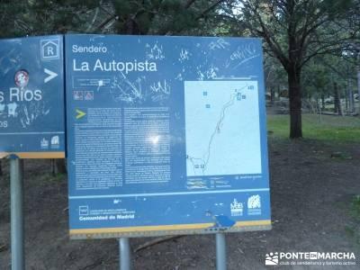 Puente de los Pollos - Cancho de los Muertos - La Pedriza;rutas senderismo; excursiones